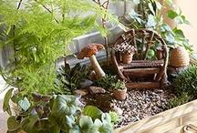 Pots et supports pour plantes