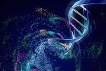 Scientific / Ciencia