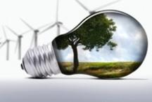 Environment / Medio Ambiente