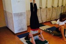 Sarvangasana / Asanas syllabus iyengar yoga teacher training