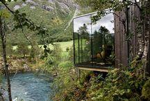 Wild ArchitecturE_