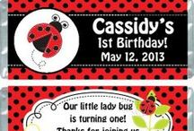 Ladybug Theme Parties / Ladybug theme party ideas for birthdays and baby showers.