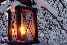 winter / wonderland