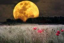 beautiful moon / by Bobbie Adrienne
