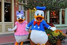 Disney y Orlando (EEUU)