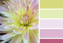 colours | barvy / inspirace, pro mě hlavně na mýdla