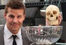 Celebrities Love Hockey Too!