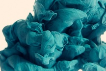 {Colored} Turquoise / by maxime connor