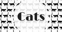 cats / I love cats and everything about them.  You'll find them all over in my pins