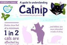 Pet care & health