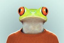 Yago Partal-Zoo portraits