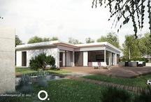 Beautiful house, stylish garden