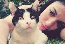 Amor Peludo y ¡Bigotudo! / El amor es una palabra de...4 patas! Fotos, amor peludo, amigos felinos incondicionales; ¿quieres compartir tu amor por los gatos?