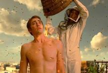 I wake pies and make the dead / The facts were THESE... -  Pushing Daisies (abc)