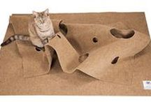 Juegos de gatos / Juegos y juguetes para gatos, asombrosos o sencillos, pero siempre bigotudamente divertidos. ¿Sabías que para tus gatos jugar es algo muy serio e importante?