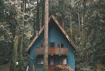 dream shelter