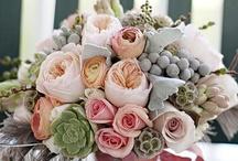 Flowers ( Virágok , Fák )
