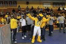 Mascot Madness! / See our mascot in action. / by Johnson C. Smith University