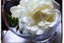MT's floral mock-ups