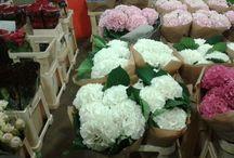 Flower Market finds 10.08.13