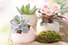 Happy Easter!  / Easter inspiration (deco, cards, cakes, etc)
