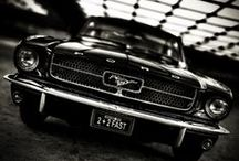 cars / by Lidia Gh