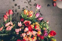 Bloemen / Bloemen uit onze winkel, maar ook mooie foto's die ons inspireren
