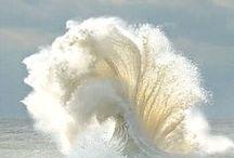 OCEANA / coastal living