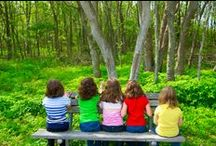 Connect Kids to Nature / The value of environmental education and natural play along with tips for teaching outside. / by Project Learning Tree