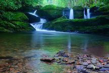 Just plain Beautiful! / Creation wonders / by Lynn Goin