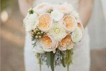 BOUQUET / wedding flower bundles