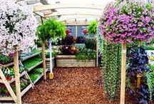 Stagecraft's Exterior Garden Centre Displays / Sharing with you our work for some of the UK's leading garden centres - from small independent to large chain, each project is unique, aimed to enhance and utilise every retail space.
