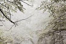 snowing!!!!!!!!!!!!!!