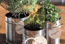 DIY Food Gift Ideas / DIY Food Gift Giving Inspiration