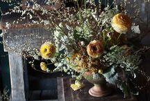 Dream Flowers.