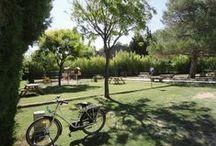 Camping Pegomas'gardens Jardin du camping Pegomas / Admirez nos espaces verts, fleurs, haies arbustives, espaces pour se relaxer et s'aérer.  Enjoy our green open spaces, gardens, relax and breath.