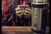 Campaña synea 2013: fusión