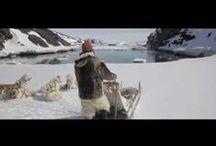 Clip / Découvrez les clips de Francis Lalanne