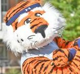 Signature Rec Programs. / Campus Recreation programs including Healthy Weigh Challenge, Destination Recreation, Deskercise, Get RECognized,  Auburn on the Rocks, and more.