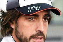 Nando alonso f1 / Formula 1