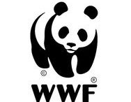 WWF / WWF was born into this world in 1961.  It was the product of a deep concern held by a few eminent gentlemen who were worried by what they saw happening in our world at that time. Since those early days WWF has grown up to be one of the largest environmental organizations in the world.  Currently there are more than 1300 WWF conservation projects underway around the world.  But our most important partnership is with you.