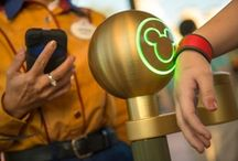 What's New at Disney World? / There is always something new to enjoy at Walt Disney World! Look here for the latest updates on what's new at the resort.