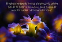Mi Blog Palabras para la eternidad / http://misfotosfrase.blogspot.com.es/