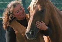 Coupony op cursus / Je raakt nooit uitgeleerd over paarden.. Op dit board geeft Coupony je inspiratie voor allerlei workshops en cursussen rondom ons lievelingsdier.
