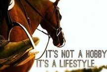 Equestrian lifestyle / Cause we are equestrians!