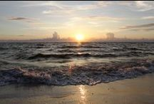SWFL Must See & Do / Sharing hidden gems and all-time favorites in Southwest Florida! Fort Myers, Naples, Sanibel Island & more!
