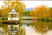 Lakeside Cottage Gardens / The most romantic bed and breakfast accommodation near Melbourne's Dandenong Ranges