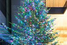 Mikimoto Christmas Tree / 1976年以来続けてきた伝統の『ミキモト ジャンボクリスマスツリー』は、ミキモト本店の建て替えにともない、今年が最後の展示になります。