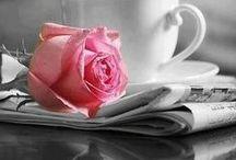 """La vida en color """"Rosa"""" / Dominando el Rosa"""