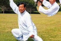 Taijiquan -太極拳 /  Il Taiji è la fusione di innumerevoli sfaccettature differenti: è arte estetica, nell'armonia e nella bellezza dei gesti, è arte marziale nelle tecniche utilizzate e nell'uso della propria forza e nella comprensione di quella dell'avversario inteso come complementare di se e non come nemico, ma è anche un arte in grado di mantenere e far ritrovare la salute e l'equilibrio psico-fisico